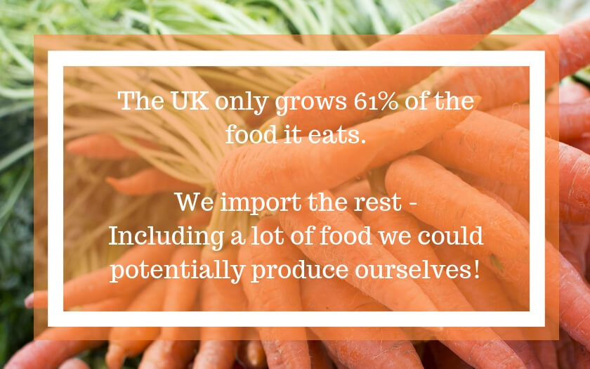Where does our food REALLY come from? - The Sterling Choice